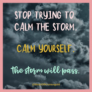 Stop trying to calm the storm