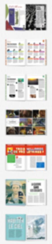 Design graphique, graphisme, Identité visuelle, Thomas Soulié, stage almasty, direction artistique, Usbek & Rica, internet et le capitalisme