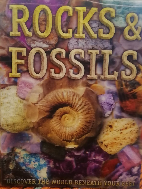 'Rocks & Fossils: Discover the World Beneath Your Feet'
