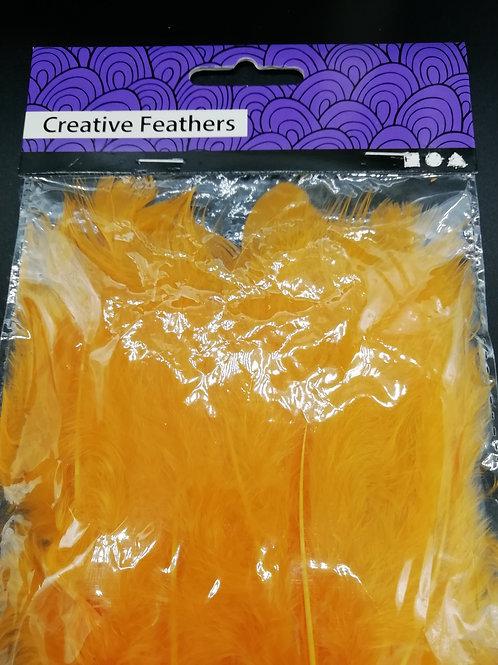 Creative Feathers - Orange