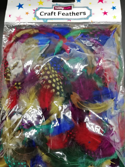 Creative Feathers - Multiple Fancy