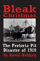 Bleak Christmas front cover.jpg