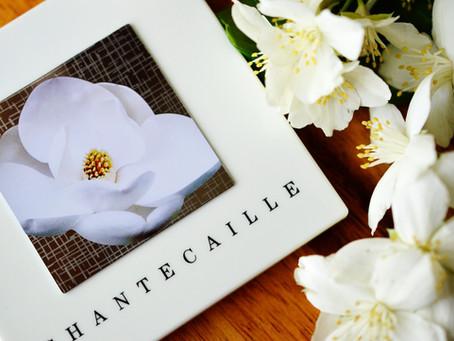 Chantecaille Le Magnolia Eye and Cheek Palette