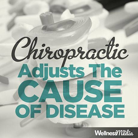 WellnessMedia_Chiropractic_00011.jpg