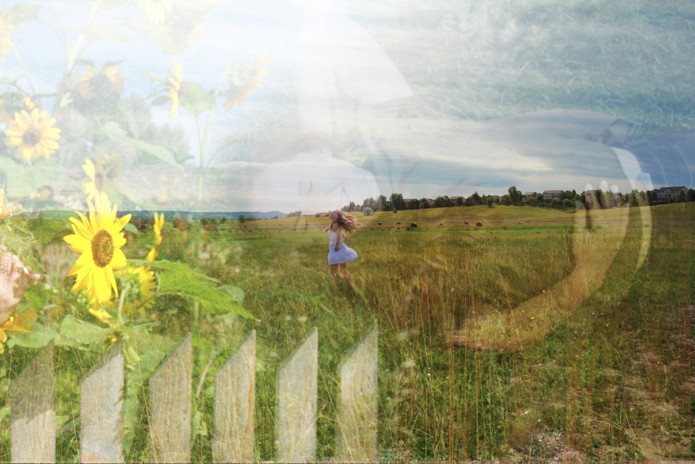 Field of Freedom