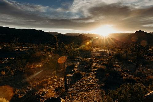 Desert Sunset 8x12 Fine Art Print