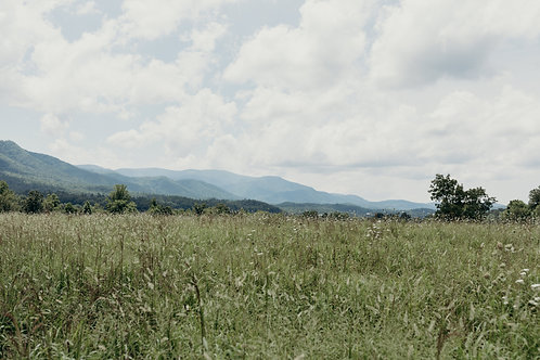 Mountain Prairie Digital Download