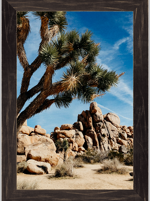 Joshua Tree 12x18 Framed Print