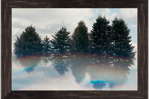 Evergreens in the Clouds 12x18 Framed Print
