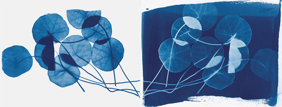 diptych-for-Blue-Prints_gw.jpg