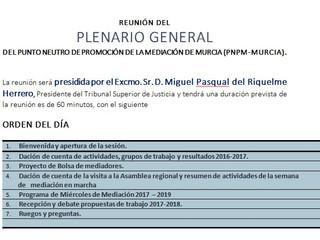 Reunion Plenaria de Mediación