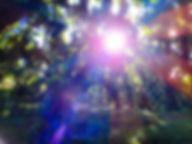 PSX_20200101_114416.jpg