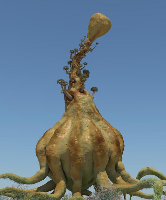 Concept Plant 3