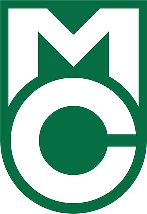 Main Logo Green111.png