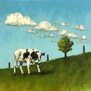 Pasture Contemplation