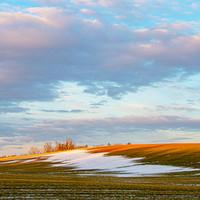 Gaspereau Field in Winter