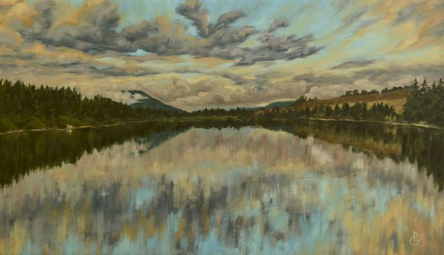 Steady Brook Pond