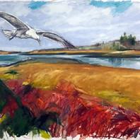 Final Seagull