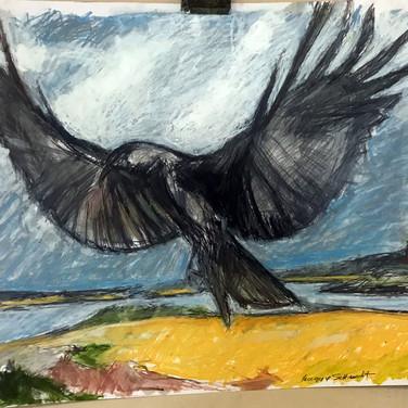 Crow Series 1