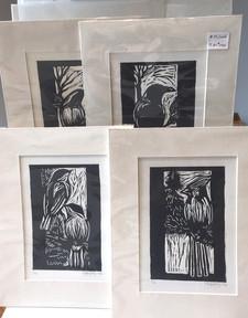 Bird prints by Bob Hainstock