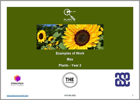 Examples of work - Plants (Y2) - Max