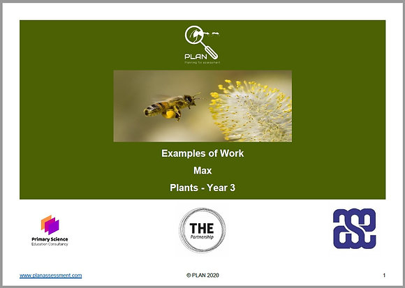 Examples of work - Plants (Y3) - Max