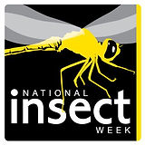 National Insect Week.jpg