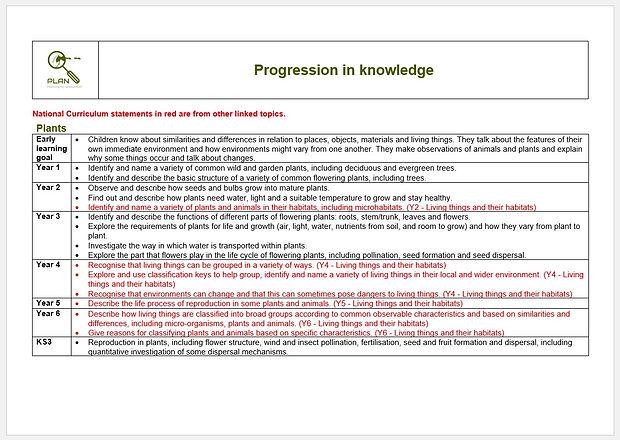 Progression in knowledge.jpg