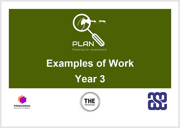 Examples of work (Y3)