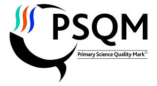 NEW_psqm_logo-e1532595700318.jpg