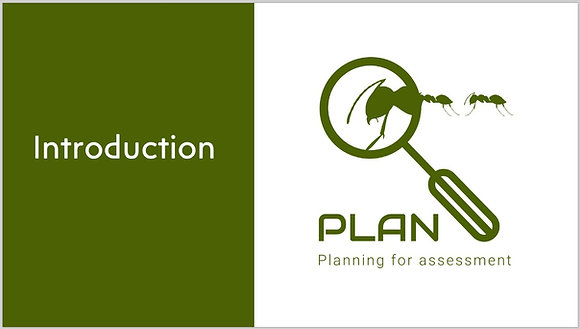 Introduction to PLAN CPD