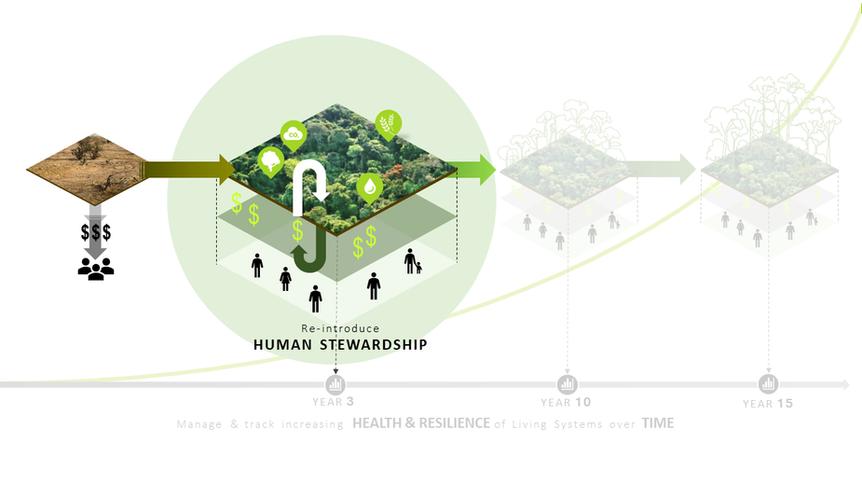 4. Re-introduce Human Stewardship
