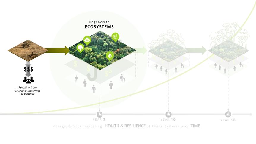 2. Regenerate Ecosystems