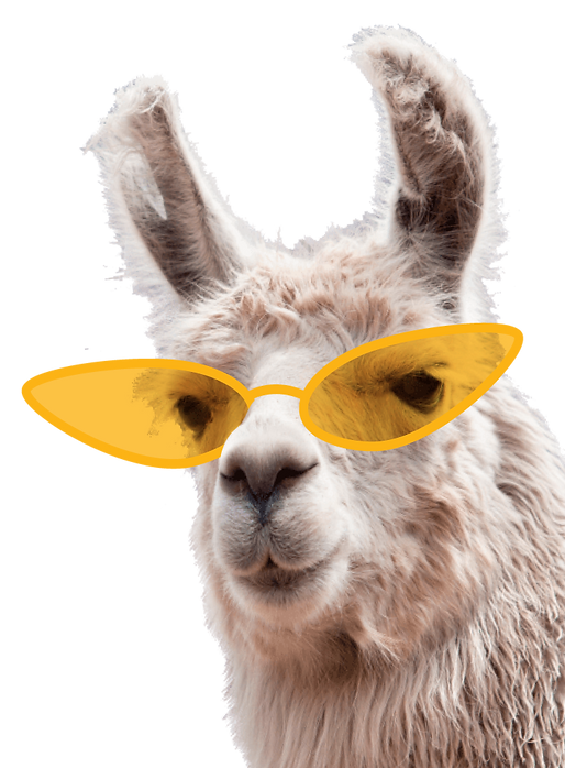 lama_tickets.png