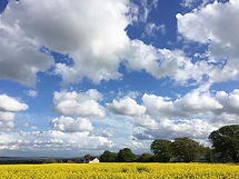 Clouds; field; summer
