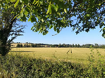 Field; Nether Winchendon; Buckinghamshire