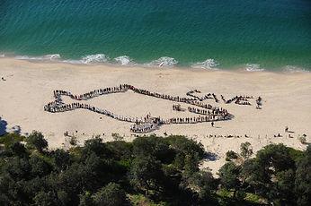 RA Whale Day 2009.jpg