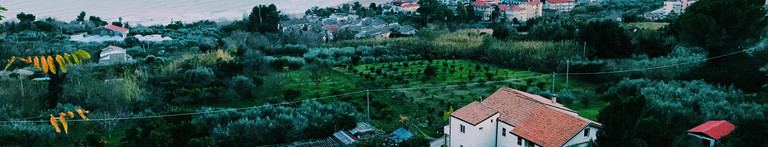 Bellavedere