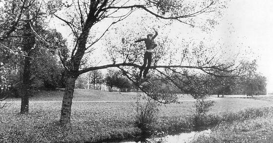 Broken fall (organic) – Bas Jan Ader.jpg