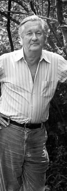 William Styron, Novelist