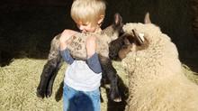 Spring breezes & farm babies