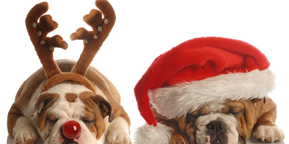 Meet Santa & Mrs. Claus