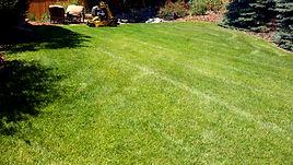 lawn4.jpg
