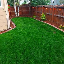 lawn7.jpg