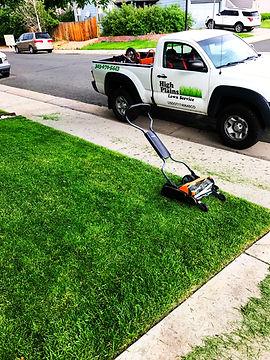 lawn8.jpg