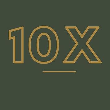 10X image 2.jpg