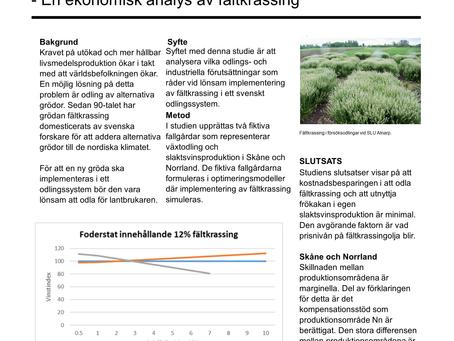 Lepidium Campestre - En ekonomisk analys av fältkrassing