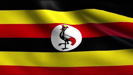 UGANDA NATIONAL FLAG.jpg