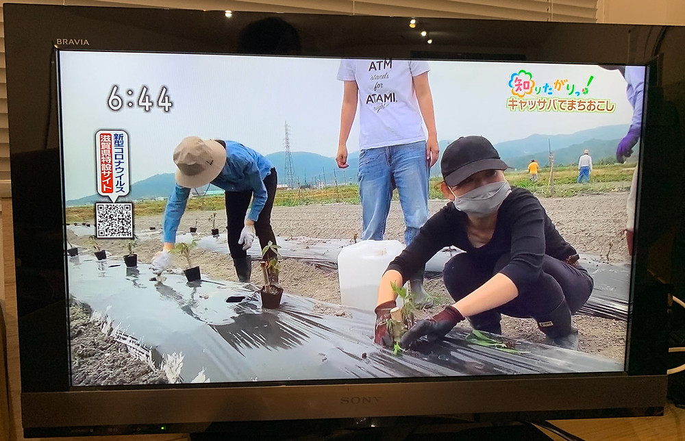 NHK おうみ発630 キャッサバでまちおこし