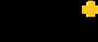Copy of logo-SafeT-black.png